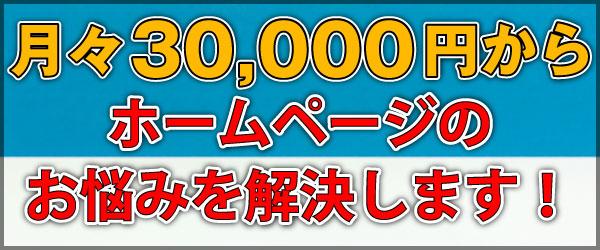 月々30000円でホームページのお悩み解決
